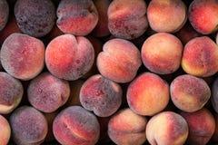 Peach.Flat peaches background. Donut peaches. stock photo