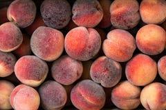 Peach.Flat peaches background. Stock Photos