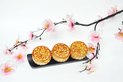 Peach flower with mooncakes Stock Photography