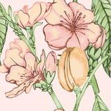Peach flower seamless pattern Royalty Free Stock Photo