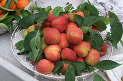 Peach fruit. Fresh & juicy red colour peach royalty free stock photo
