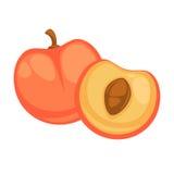 Peach Fruit Isolated on White Background Nectarine Stock Image