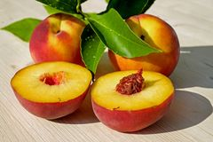 Peach, Fruit, Red, Yellow, Juicy Royalty Free Stock Photos