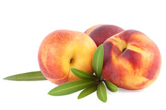 Peach fruits isolated on white Stock Image