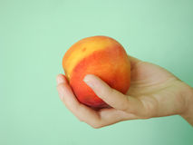 Peach. On a green background in the girl's hand Stock Photos