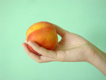 Peach on a green background in the girl's hand. Girl holding a peach and thinks. Does this natural product Stock Images