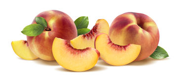 Peach group horizontal  on white background Royalty Free Stock Images