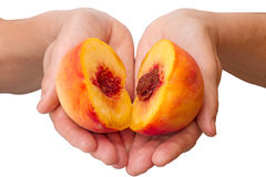 Peach halves in his hands Stock Photography