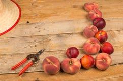 Peach harvest background Royalty Free Stock Photo