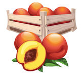 Peach harvest in wooden box, vector fruit Stock Images