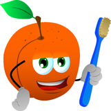 Peach holding tooth brush Royalty Free Stock Photo
