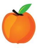 Peach illustration Stock Photo