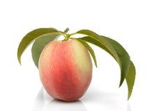 Peach isolated Royalty Free Stock Photo
