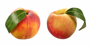 Peach on isolated background Stock Photo