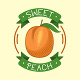 Peach isolated badge vector illustration. Ripe peach fruit badge isolated tasty agriculture diet dessert on background. Healthy juicy vegetarian organic food Royalty Free Stock Photography