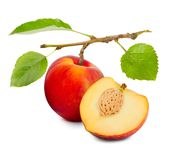 Peach isolated. Photo of peach with slice and leaves isolated on white Royalty Free Stock Photos