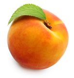Peach isolated. On white background Stock Images