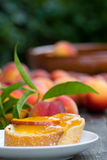 Peach jam with baguette Royalty Free Stock Image