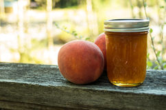 Peach jelly with peaches Royalty Free Stock Image