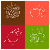 Peach,Kiwifruit, Coconut,Grapefruit Stock Images