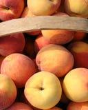 peach koszykowa Zdjęcie Royalty Free
