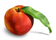 Peach With Leaf 2 Stock Photo