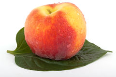 Peach with leaf Stock Photos