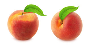 Peach with leaf. Full depth of field. Royalty Free Stock Photo