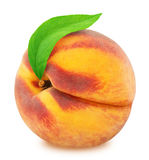 Peach with leaf. Full depth of field. Stock Photography
