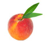Peach with leaf Stock Image