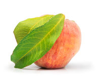Peach and leaf Stock Photo