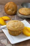Peach Muffins. Homemade peach muffin with fresh peaches on a white plate sitting on a countertop Royalty Free Stock Photos