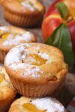 Peach muffins with icing sugar closeup on the table Stock Image