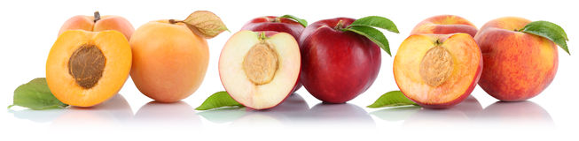 Peach nectarine apricot peaches nectarines fruit fruits isolated Stock Images