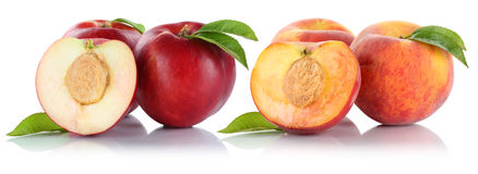 Peach nectarine peaches nectarines fruit fruits isolated on whit Stock Photo