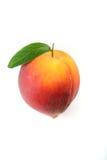 peach odizolowana Zdjęcia Royalty Free