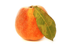 Peach one Royalty Free Stock Image