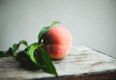 Peach Orchard  7. A Series of images of peaches in an orchard and on a back drop Royalty Free Stock Image