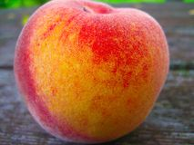 Peach Perfect. A perfect, absolutely delicious looking peach resting on a picnic table Stock Image