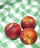Peach Picnic Royalty Free Stock Image