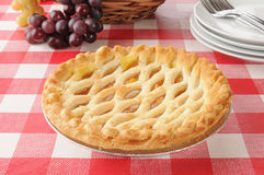 Peach pie on a picnic table Stock Images