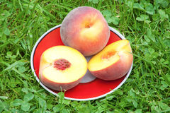 Peach in plate on grass Royalty Free Stock Photography