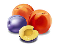 Peach and plum Stock Photos