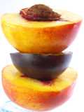 Peach+plum+peach Royalty Free Stock Images