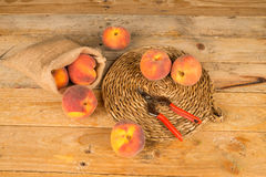 Peach produce Royalty Free Stock Image