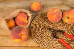 Peach produce still life stock photo