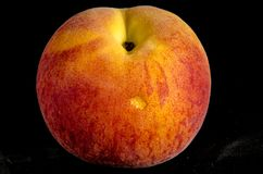 Hay look at that you found A fresh sweet juice peach Royalty Free Stock Photo