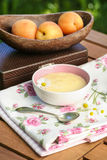 Peach pudding on wooden table in the garden Stock Photography