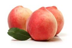 peach ripe Arkivfoton