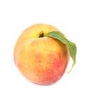 peach ripe 库存照片